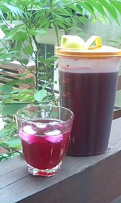 アラフォーママの子育て日記・赤紫蘇ジュースの季節です