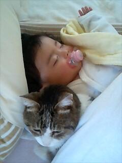 アラフォーママの子育て日記・Babyなっちゃんと猫のメロディのお話