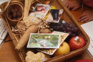 小学生の食育・秋の旬で大学芋作り♪