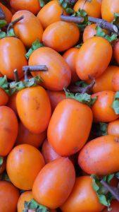 干し柿用の古老柿が届きました♪